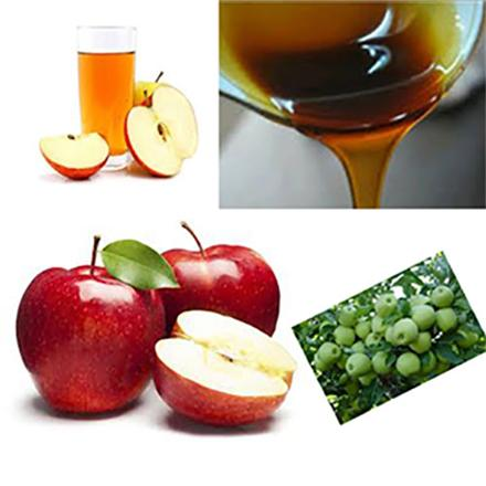 تولیدی شیره سیب فله